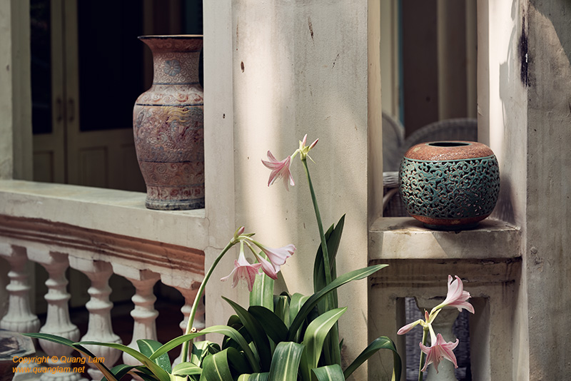 Composite of Ceramics and Flowers #1