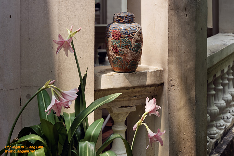 Composite of Ceramics and Flowers #2