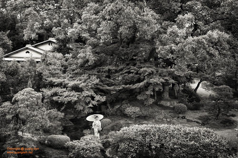 Inlen Fine Art Gallery Photo Print Vietnam Nature Flowers Garden