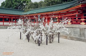 Paper prayers in Heian Palace
