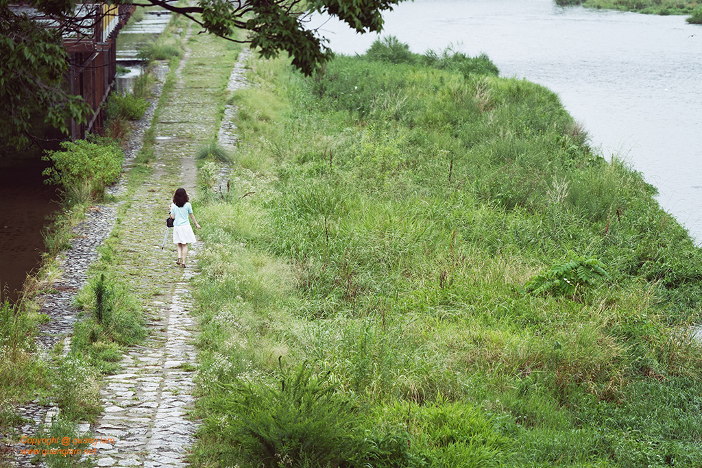 Wander on the Kamo river